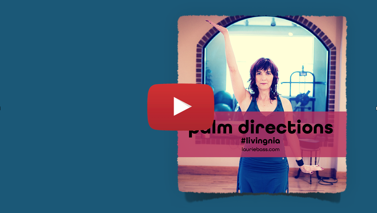 Palm Directions 2